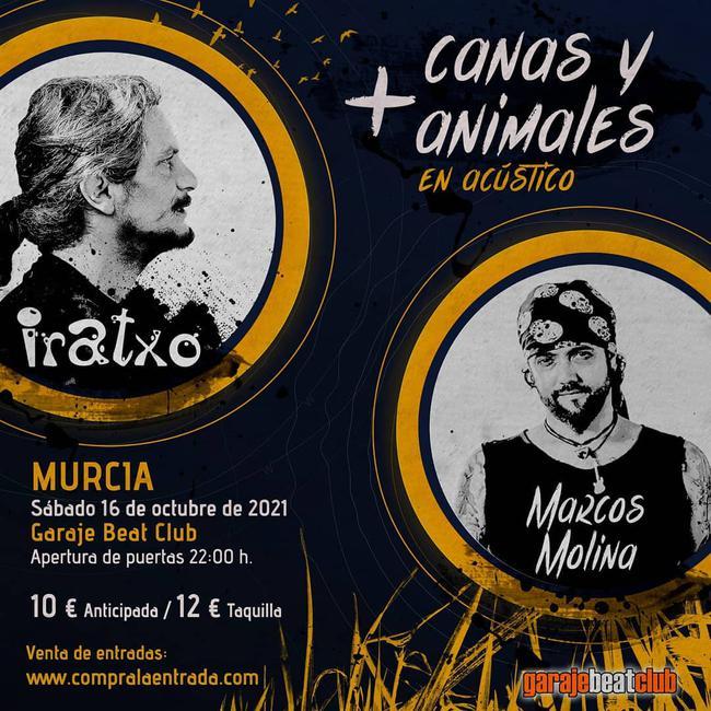 Iratxo + Marcos Molina
